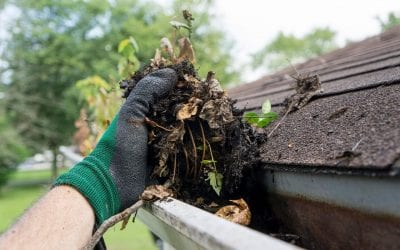 Outdoor Home Maintenance Projects for Spring